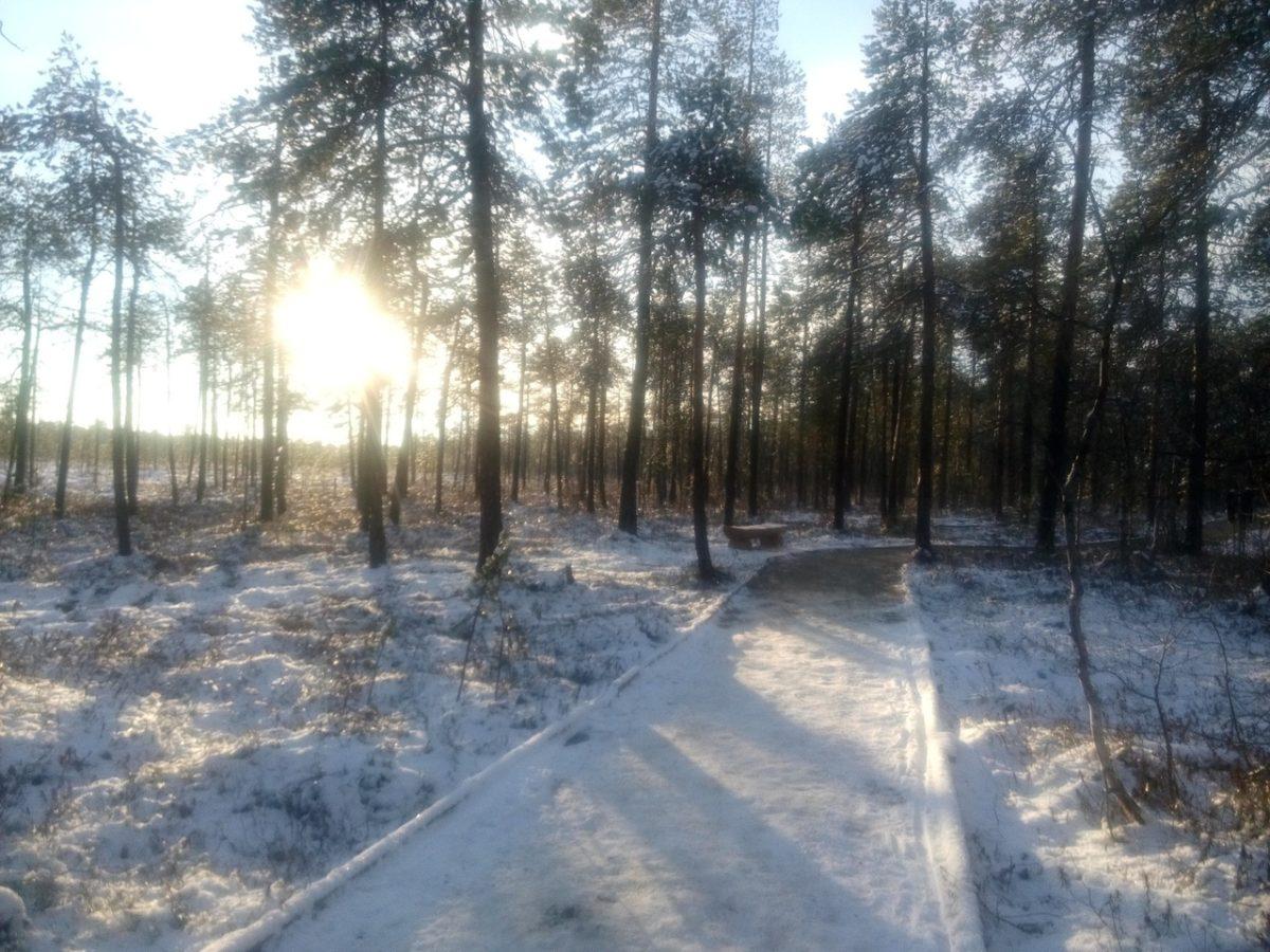 Усинск ждёт зиму - температура выше нуля не поднимается ...