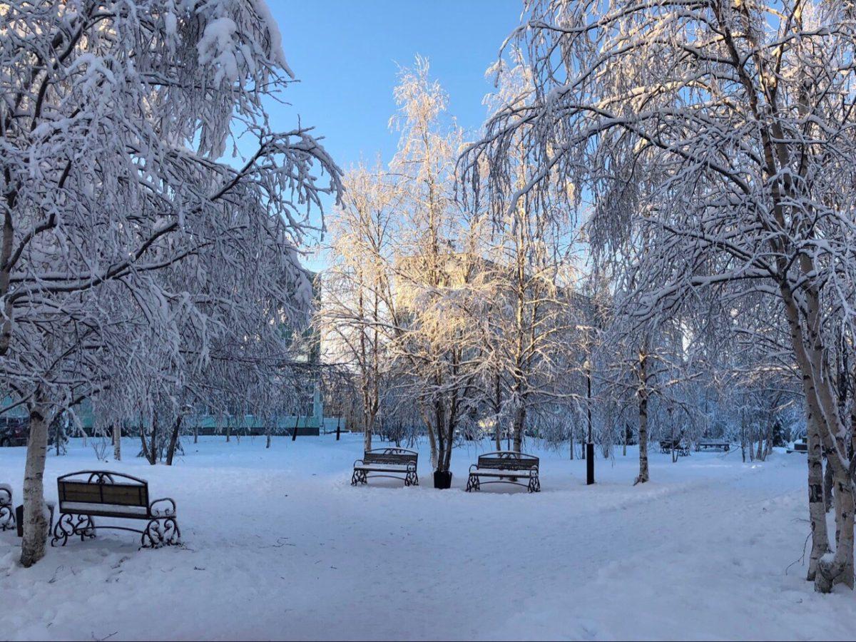 Погода в Усинске: в городе продолжает бушевать ветер ...